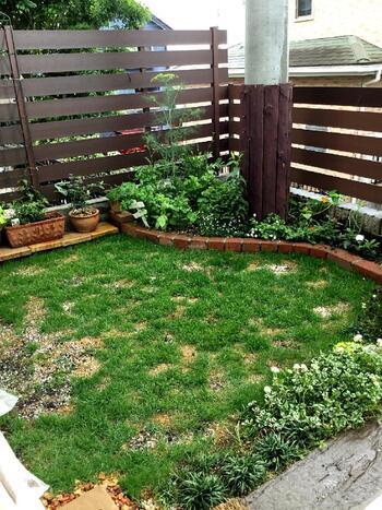 広さや形に合わせて、どんな庭づくりができるのか考えてみましょう。細長かったり小さい庭の場合、小道を作ったり寄植えを置く、フェンスを立てて壁に植物を吊るすなどすると、スペースを有効に使いながら雰囲気が出せます。広い庭の場合は、背の高いシンボルツリーを植えてもいいですね。