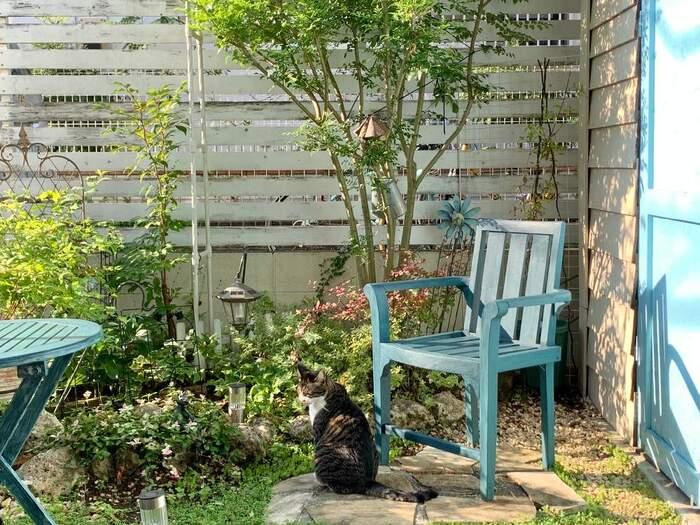 目隠しフェンスの傍にテーブルや椅子を置けば、お気に入りのくつろぎスペースに。猫ちゃんもとっても気持ちよさそうですね。