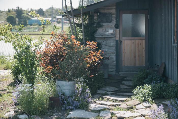 長野県にある、パンと日用品のお店「わざわざ」。お店の敷地内にある庭のお手入れや日々について綴られています。写真が美しく、試行錯誤の様子が伝わってきてついつい読み込んでしまいます。