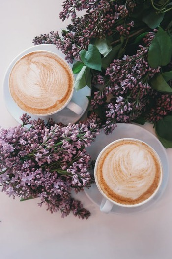 カフェラテ発祥の地は、水の都として知られているイタリアのベネツィア。世界最古のカフェ「カフェ・デ・ナット(1720年〜)」で生まれました。  世界中の芸術家が愛するこのカフェで生まれたカフェラテは、濃厚なミルクの味と深みのあるエスプレッソの香りが存分に楽しめる逸品なんだとか。