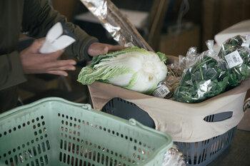 キャベツや白菜、大根など、ビニール袋で包装されていない野菜・果物を買うことって度々ありますよね。備え付けのポリ袋で包めればよいのですが、袋に入らず、直接入れることも。  そんな時に、どうしても野菜くずや土などがバッグの中に落ちてしまうことがあると思いますが、要注意です。  食品くずはカビの「栄養」になるもの。中身を全部出したら、バッグの中に落ちているものはしっかり確認し、全部、すっきり捨てることが大切です。