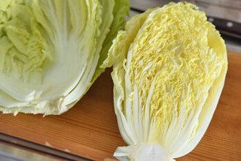 冷凍保存の方法も◎シャキッと、とろっと「白菜」の美味しいアレンジレシピ
