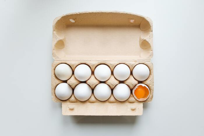 お弁当にもメインにも!覚えておきたい「卵焼き図鑑」