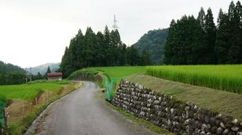 アニメーション映画なので「ロケ地」はないものの、モデルとなった場所が、細田監督の故郷でもある「富山県」にあります。  この畑・・・母親・花と、そのこどもたち・雨と雪が移り住んだ空き家の近くの風景として描かれていたシーンに登場する風景にそっくり!