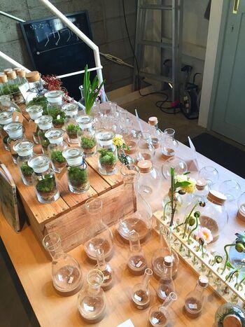 実はビーカーと植物って相性抜群なんです。薬品を入れていた実験器具にグリーンを入れるだけで、まったく違った雰囲気に見えるから不思議ですよね。