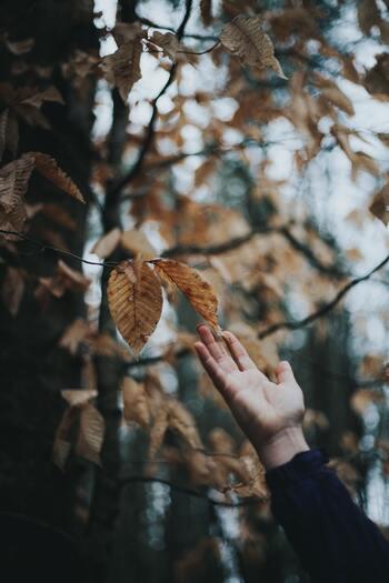 今年こそトライ。一度しかないこの秋を楽しみつくす「したいことリスト」