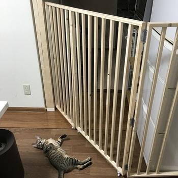 また、柵の足元にキャスターを付ければゲートが開け閉めしやすく、さらに高さのある柵や長めの柵でも安定感のある仕上がりになります◎キッチンや家具に合わせて、色んな工夫を考えながら楽しめるのもDIYの醍醐味です♪