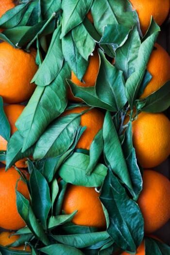 冬に旬を迎える温州みかんは、果汁が凝縮されたようなジューシーなみかんです。レシピも豊富で、アレンジ次第で皮も含めて丸ごと食べられるので、箱買いしても大丈夫。ビタミンCもたっぷりなので、毎日のスイーツとして取り入れたいですね。ぜひ、参考にしてみてくださいね。