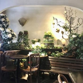 一歩中へ入るとまるで別世界が広がります。植物やお花がたくさん並ぶ店内は、落ち着いた雰囲気で温かさを感じさせます。