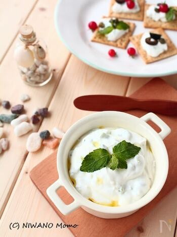 ギリシャでもよく料理にヨーグルトが使われます。その中の一品、ザジキは和えるだけと簡単で、日本でも作りやすいレシピなのでおすすめ。ディップにするだけでなく、サラダやサンドイッチにも合うので色々と試してみましょう。