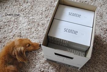 セリアの人気アイテム、プレンティーボックスを使った収納術。ボックスティッシュが綺麗に収まります。普通サイズのティッシュなら10箱、スリムなティッシュなら12箱は入るそうですよ。