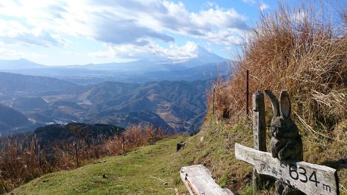 神奈川県山北町、丹沢山塊の南西部に位置する「大野山(おおのやま)」は、ハイキングコースがしっかりと整備され、初心者でも子供でも登りやすいお勧めの山です。牧場とすすき野が広がる山頂付近は、低山ながらもスッキリと視界が開けていて、眺望が抜群です。  【大野山ハイキングコース上に置かれた木彫のオブジェ(スカイツリーと同じ高さの地点に配置されている)】