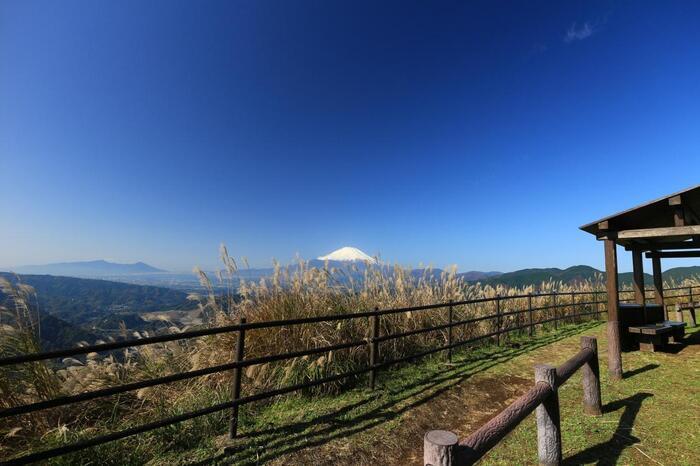 山頂手前には、富士山のビューポイントとなる「あずま屋」が設置されていますので、一息入れても良いでしょう 【11月中旬頃の山頂付近】