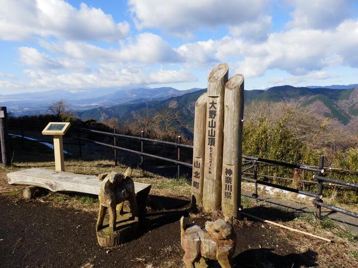 このコースは、先の「弘法山ハイキングコース」と異なり、一つの山(大野山)の山頂を目指すコースです。JR御殿場線の谷峨駅から登り、JR山北駅に向かって下山します。【12月初旬の「大野山」山頂】