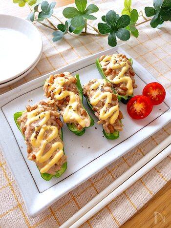 ピーマンの肉詰めならぬ、ピーマンの納豆・ツナ詰めです。小さめのピーマンを使うと一口サイズで食べやすくなります。マヨネーズの代わりにチーズをのせても美味しいのだそう◎ おつまみにもおすすめです♪