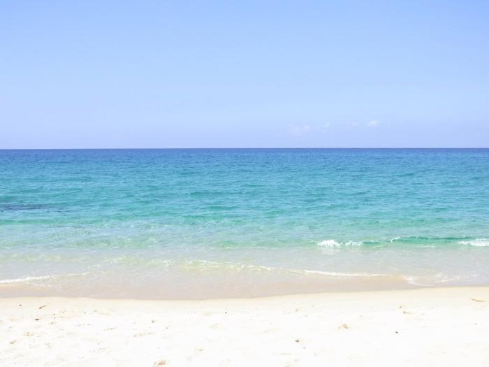 屋久島は実は美しい海も魅力。海水浴はもちろん、ダイビングやシュノーケリングをすれば屋久島ならではのカラフルな魚たちに出会うことができます。