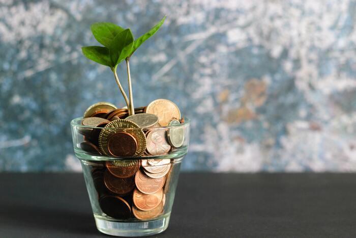 未来を考えると、今が豊かに。「サステナブル」な暮らしの考え方