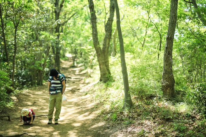 """今記事では、東京都心圏に暮らす人々に向けて、お財布と身体に優しく、低学年の子供でも、初級者でも""""山歩きを楽しめる""""「低山ハイキングコース」を3つ厳選して紹介します。  紹介するのは、以下に掲げる5つのポイントをクリアしたハイキングコースです。  【親子で行くのにお勧めの「弘法山ハイキングコース」】"""