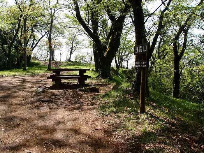 入口看板の標識に従って小道入り、そのまま山道を登っていきます。道なりに進んで行くと広場のような「浅間山」山頂に到着します。【桜が散り葉桜の頃の「浅間山」山頂】