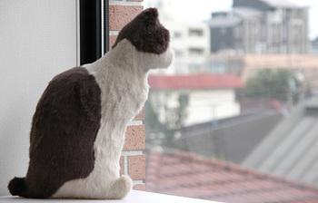 背中の丸みや横を向いた姿がなんともリアル。少し大きめで、腕の中で抱いたり毛並みを撫でたり…ペットのように愛おしい存在になること間違いなしです。