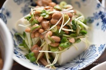 納豆は食物繊維やたんぱく質が豊富なのでダイエット目的にもおすすめの食材です。たくさんの薬味と合わせてサラダ気分のヘルシーな冷ややっこレシピはいかが。
