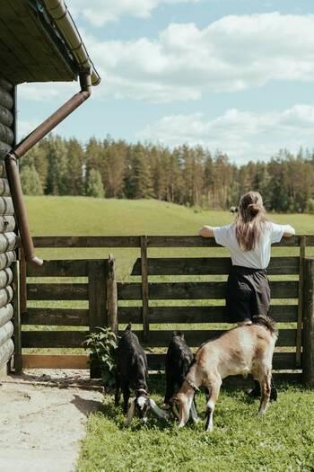 先ほどの項目で触れた【エシカル・ヴィーガン】に分類されるのが、動物愛護の精神でヴィーガンになったとされる人々です。彼らは、動物が関係して生産された食べ物、衣服、化粧品、イベントなどに対して厳しい目を向けています。
