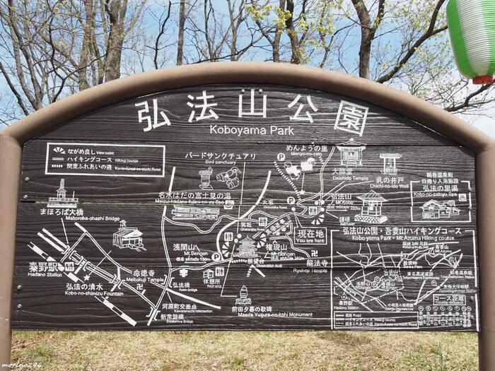 この「弘法山ハイキングコース」は、秦野盆地の北に連なる丘陵を歩くもので、標高250m以下の山々を歩く快適なハイキングルートです。小田急「秦野駅」から歩き、『弘法山公園』内の「浅間山」・「権現山」・「弘法山」の三つの山を縦走し、「吾妻山」を経由して、「鶴巻温泉」へと下ります。
