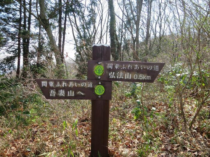 現在市内には、ルート表示に従えば、迷うことなく歩けるハイキングコースが5本設定されています。その中で一番お勧めするのが、駅から徒歩で歩ける『弘法山ハイキングコース(弘法山公園・吾妻山コース)』です。