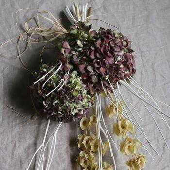 秋色紫陽花はその名の通り、秋らしい落ち着いた色合いの紫陽花です。特別な品種ではなく、初夏に咲く紫陽花の色が変化したもの。夏に紫陽花を剪定しないでおくと、色の変化を楽しめます。美しい秋色紫陽花はお花屋さんで手に入れられますよ。