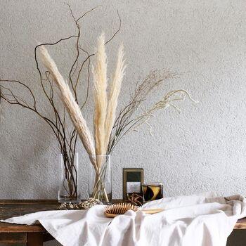 9月〜10月頃に見られる植物です。長い穂はお部屋に飾ると存在感があり、思わず触りたくなるふさふさ感も◎他のドライフラワーと一緒に飾っても良いですね。