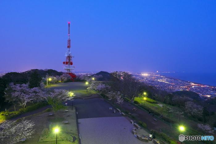 """「湘南平」は、花見客で賑わう""""桜の名所""""として知られるだけでなく、県内屈指の""""夜景""""スポットとしても有名です。  ビューポイントは、高麗山公園レストハウスの新展望台と電波塔の旧展望台の2箇所。新展望台は通常21時半で閉鎖されますが、電波塔の方は終日開放されているので時間を気にしなくても夜景を楽しむことが出来ます。 【桜の頃の「湘南平」レストハウス展望台からの眺望。正面が電波塔(テレビ塔/平塚テレビ中継局)】"""