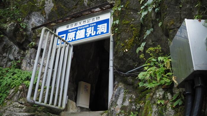 奥多摩駅からバスで40分。東京とは思えない秘境感が漂う日原鍾乳洞は、都の天然記念物に指定されている自然洞窟です。鍾乳洞とは石灰岩が地表の水や地下水、雨水などで浸食されてできたもの。日原鍾乳洞は関東随一の規模ともいわれており、ぜひ一度は訪れてみたい神秘的なスポットです。