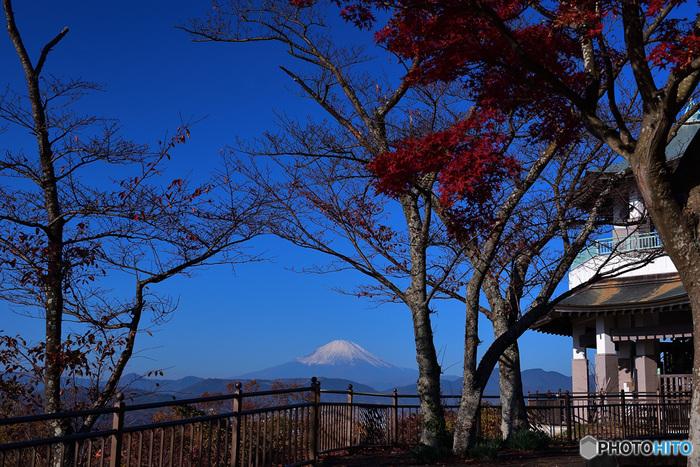 三つの頂きを持つ弘法山。  どの頂きからも、素晴らしい景色を望むことが出来ます。特に素晴らしいのが二つ目の「権現山」。頂上に設置された展望台からの眺望では格別で、富士山はもとより、晴れていれば遠く伊豆大島まで望むことが出来ます。 【11月下旬の「権現山」山頂からの眺め】