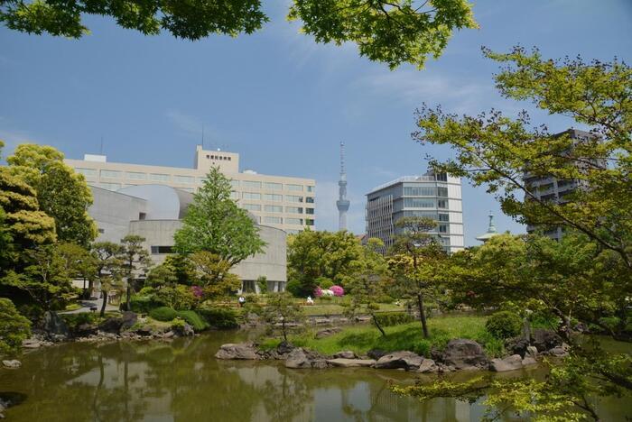 JR両国駅から徒歩5分のところにある旧安田庭園は、江戸時代に作られたという大名庭園。中央の池の周りに散策路があり、風情ある灯篭や橋を眺めながらのんびりお散歩をすることができます。庭園からスカイツリーを眺めることもでき、墨田区の歴史の移り変わりを感じることができるでしょう。