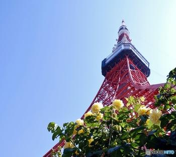 現在東京都では東京在住者が都内に宿泊すると、1人様あたり1泊5,000円(日帰り旅行は2,500円)が助成されるというキャンペーンを実施しています。回数に制限はないので、お友達や家族と利用してみてください。