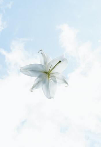 生きづらさはあなたのせいじゃない。傷つきやすい自分を愛おしむ方法