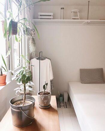 賃貸に多い白い壁と木目の床を活かして作る、シンプルでナチュラルなインテリアコーディネート。スッキリとしていてどこかホッとできる雰囲気が魅力です。壁や床の色に近い、白やベージュ、ブラウンなどを使ってまとめるといいでしょう。