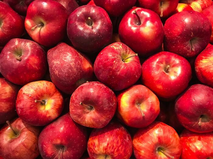 りんごは、上手に保存することでおいしさをより長くキープできます。 コツは、りんごの水分を逃がさないこと。ペーパータオルや新聞紙で1個ずつ包んでから、ポリ袋に入れて保存しましょう。低温を好むので、冷蔵庫に入れるなら野菜室ではなく冷蔵室がおすすめ。また、りんごは他の果物や野菜の熟成を促す「エチレンガス」を放出するので、ポリ袋の口は閉めておきましょう。冷蔵庫に入りきらないほどの大量のりんごは、できるだけ低温の場所で保存してください。