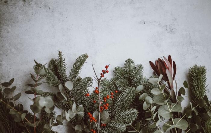 「クリスマスさんってどんな人?」特別な日の存在をまだ知らないムーミンが迎える、始めてのクリスマスを描いた物語です。ピュアなムーミン一家がクリスマスと向き合い出会うさまざまな魔法や奇跡の夜。慌ただしく進められる準備の様子は、ずっと観ていられるような心温まるシーンになっています。