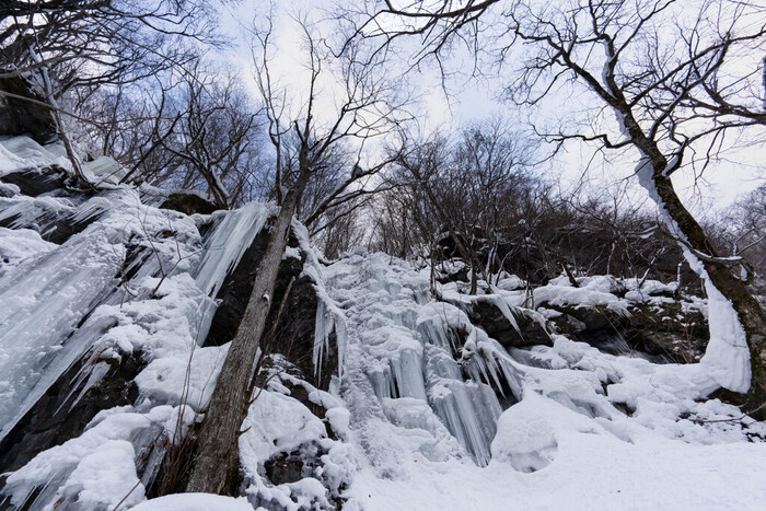 氷瀑とは、その文字通り、水が流れ落ちる「滝」が凍り付いたもののことをいいます。