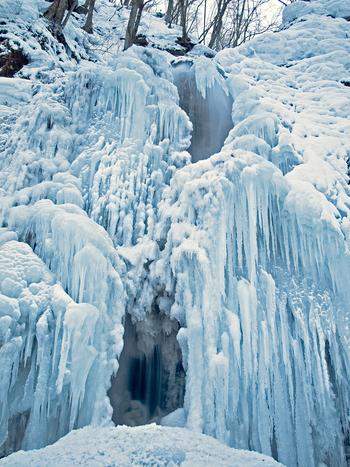 奥入瀬渓流にある「雲井の滝」は、訪れる時季によっては、完全氷結した姿を見ることもできます。氷のつららが幾重にも折り重なる様は、この世のものとは思えないほど神秘的な美しさを醸し出しています。