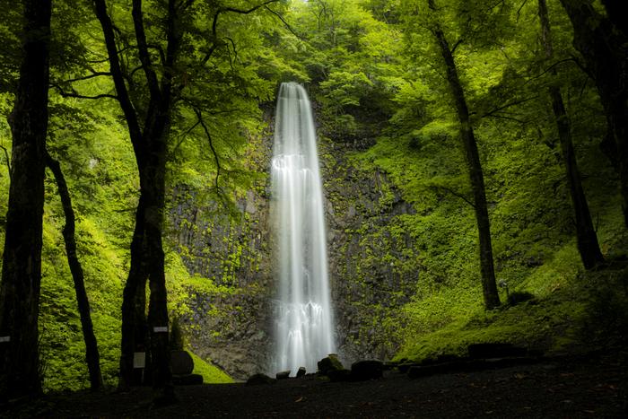 グリーンシーズンの玉簾の滝は、山肌を撫で落ちるような滑らかな直瀑です。夏はマイナスイオンを浴びに、冬は氷瀑を見物しに、季節を変えて玉簾の滝を訪れてみるのもおすすめですよ。