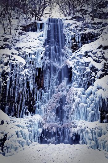 落差63メートル、滝幅5メートルの玉簾の滝は、山形県を代表する名瀑で、四季折々で美しい表情を見せてくれます。防寒対策をしっかりとして凍てつく寒さに負けず、滝壺付近まで歩いて行くと、氷と冬の気候が融和した芸術的な造形美を鑑賞することができます。