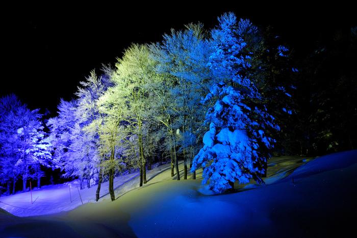 蔵王の樹氷は夜間のライトアップも施されます。もこもことした姿から「モンスター」とも呼ばれる樹氷が漆黒の闇夜を背景に浮かび上がる様は幻想的で、日中とは異なる表情を見せてくれます。