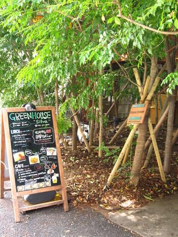 三宮駅からすぐ近くに広がる緑豊かなカフェ「グリーンハウスシルバ」。都会の中に急に出現する緑のトンネルを抜けるとお店が見えてきます。オアシスという言葉がぴったりな癒し系カフェで、神戸の中でもとても人気なお店のひとつです。