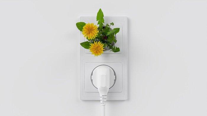 電化製品の中には、「待機電力」を使うものがあります。待機電力とは、電源がオフになっていても、コンセントを差している限り消費し続ける電力のこと。1世帯の年間消費電力の、およそ6%が待機電力として消費されているそうです。使っていない間にも、これだけの電力を使っているのは、少しもったいない気がしませんか?