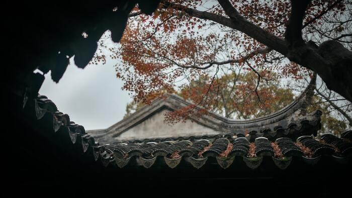 日本の古き良き暮らしを垣間見る。《昭和》が舞台の名作邦画7選
