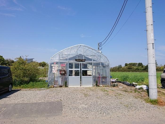 「くろいちごcafe」は、圏央道の茂原北ICから車で15分のところにあります。いちごとブルーベリー畑の中に佇む農園カフェで、ビニールハウスの奥がカフェスペースになっていますよ。