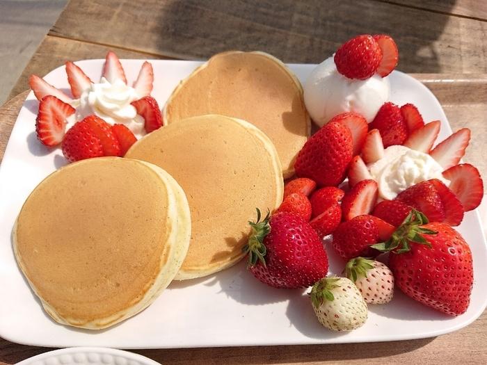 """パンケーキは季節によってフルーツが変わります。こちらは12月~6月限定の「完熟イチゴのパンケーキ」。しっとりふわふわのパンケーキに、千葉県で育成され、通称""""くろいちご""""と呼ばれる「真紅の美鈴(しんくのみすず)」やとちおとめ、やよいひめなど4品種が贅沢に盛り付けられています。  初夏はメロン、盛夏は桃のパンケーキが登場。どのパンケーキもフルーツのみずみずしさが感じられ絶品です。"""