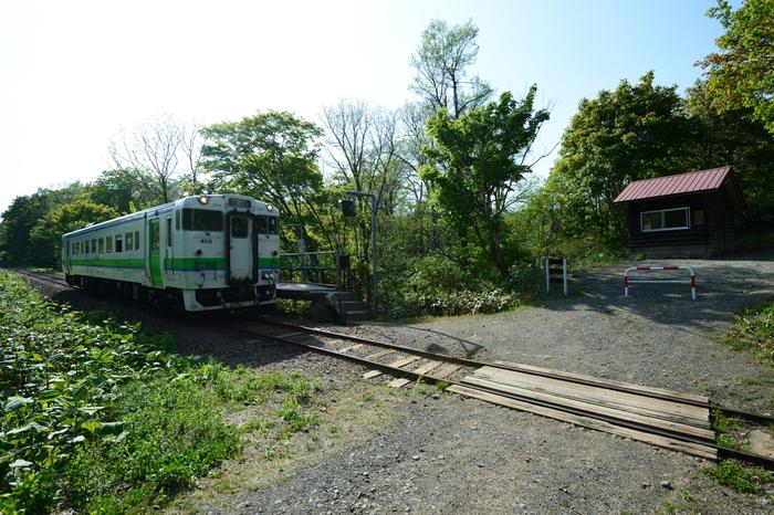 秘境駅研究家の牛山隆信氏が自身の著書やWebサイトでは、秘境駅をランキングしています。秘境度(断崖絶壁や深い山林の中にある)、雰囲気(駅舎や周囲の建物に古い鉄道史が感じされる)、列車到達難易度(停車する列車が少なく、鉄道を使ってもアクセスが困難)、車到達難易度(駅までの道が未舗装の林道や歩道のみなど、自動車での訪問が困難)など、ランキング基準は様々です。